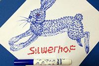 Silwerhof подвел итоги творческого конкурса